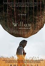 Willow (Vrba)