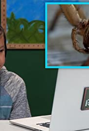 Kids React to Lucas the Spider Poster