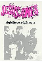 Jesus Jones: Right Here, Right Now