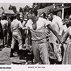 Glenn Ford, Stella Stevens, and Melvyn Douglas in Advance to the Rear (1964)