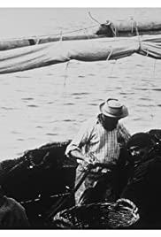 Pêche aux sardines Poster