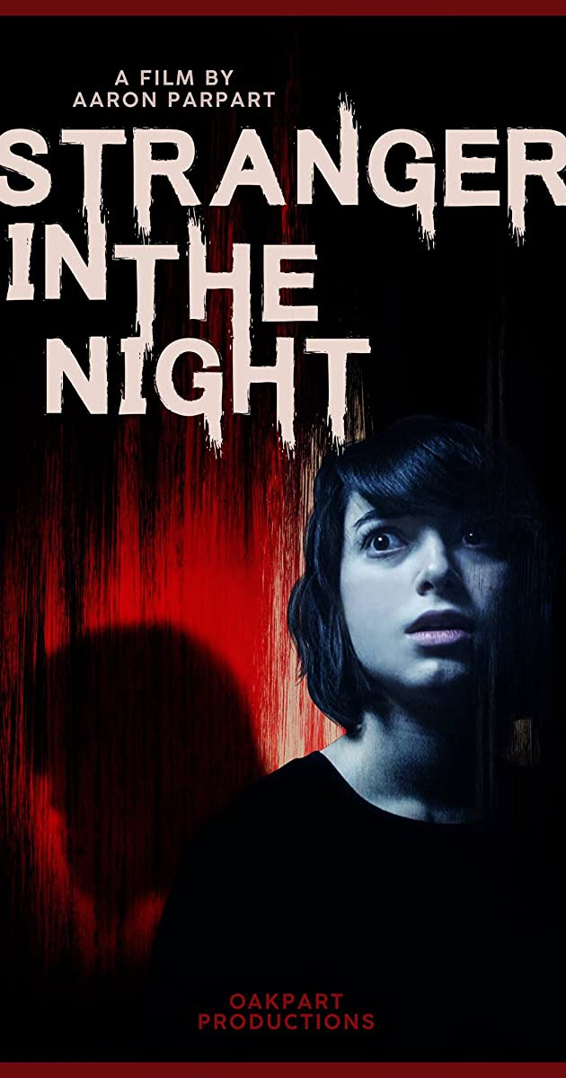 Stranger in the Night (2019) Hindi (Voice Over) Dubbed + English [Dual Audio] WebRip 720p [1XBET]