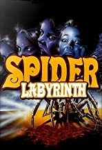 The Spider Labyrinth