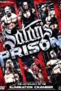 WWE: Satan's Prison - The Anthology of the Elimination Chamber (2010) Poster