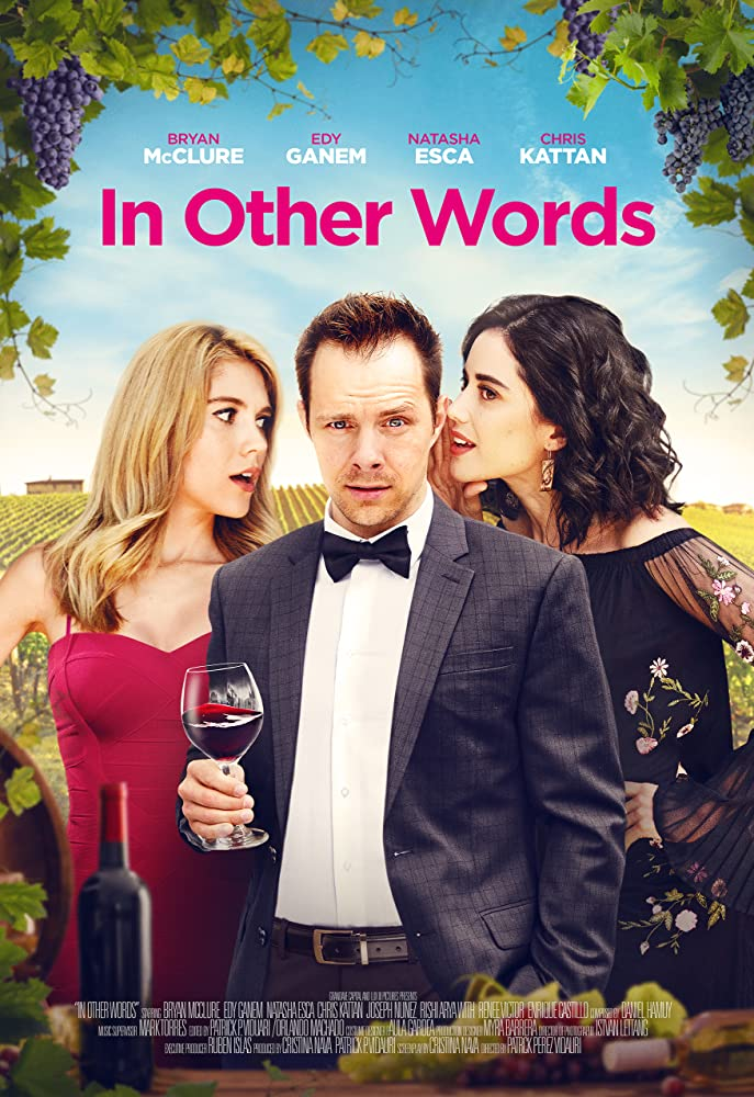 In Other Words 2020 English 480p HDRip 300MB ESubs Download