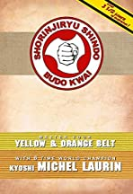 Kyoshi Michel Laurin Prepares You for Yellow & Orange Belt
