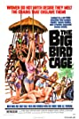 The Big Bird Cage (1972) Poster