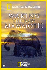 Waking the Baby Mammoth Poster