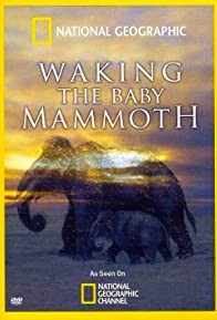 Primary photo for Waking the Baby Mammoth