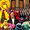 Leslie Carrara, John Kennedy, Carmen Osbahr, David Rudman, Matt Vogel, Eric Jacobson, Billy Barkhurst, and Ryan Dillon in Sesame Street (1969)