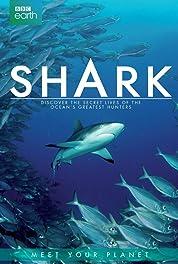Shark (2015) Poster