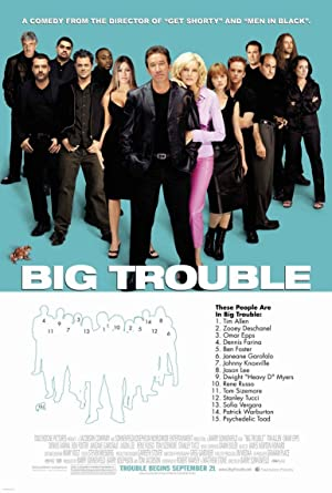 Big Trouble Poster Image