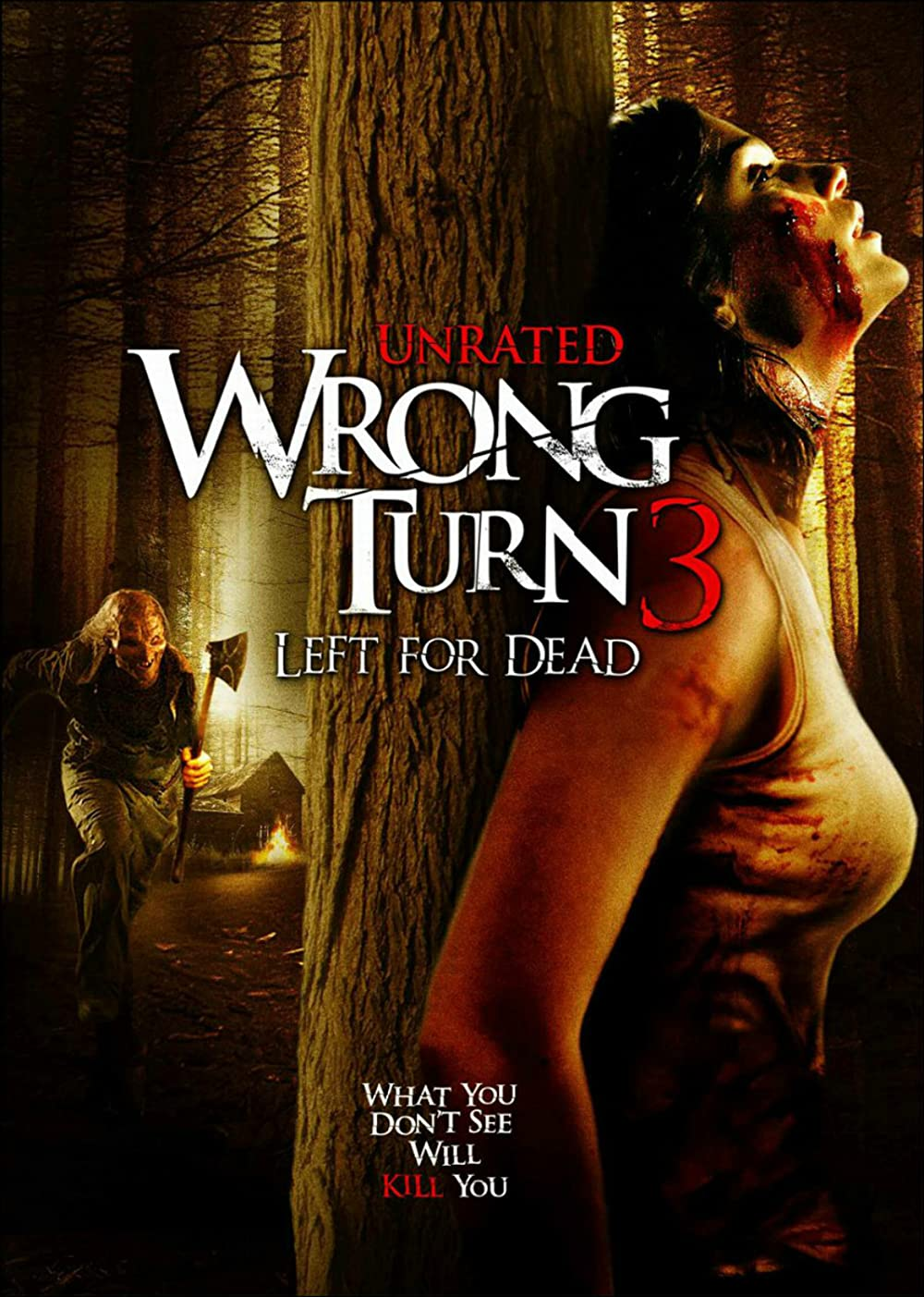 Wrong Turn 3: Left for Dead (2009) English 300MB BluRay 480p ESubs Download