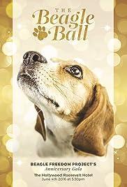 5th Annual Beagle Ball Live Poster