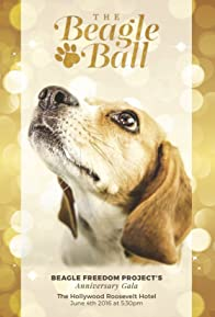 Primary photo for 5th Annual Beagle Ball Live