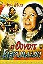 El coyote emplumado
