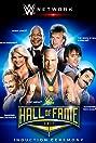 WWE Hall of Fame (2017) Poster