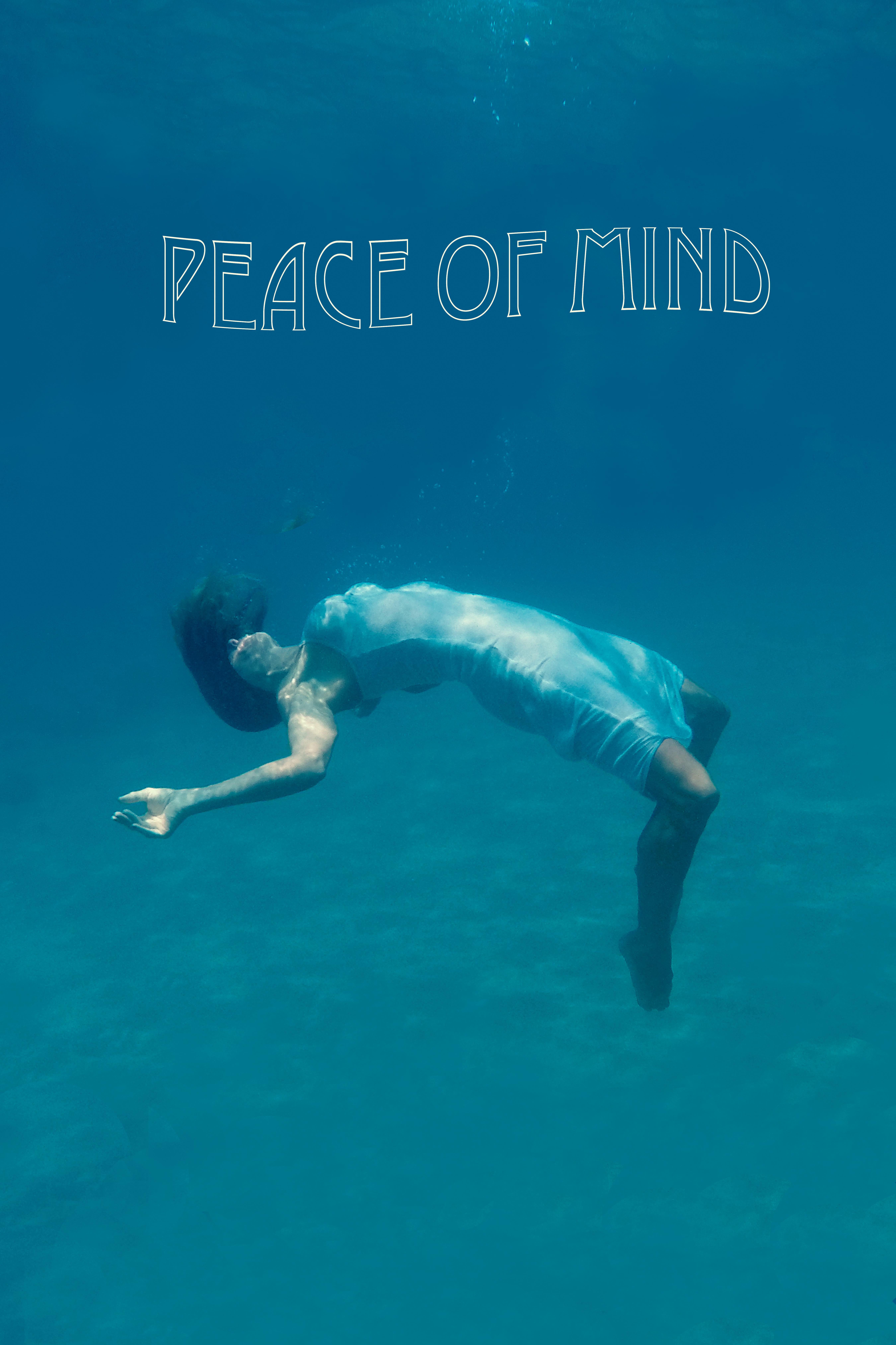 Peace Of Mind 2019 Imdb