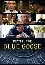 The Blue Goose: MSP