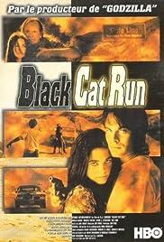 Black Cat Run Poster