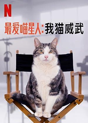 Poeslief: een ode aan de kat