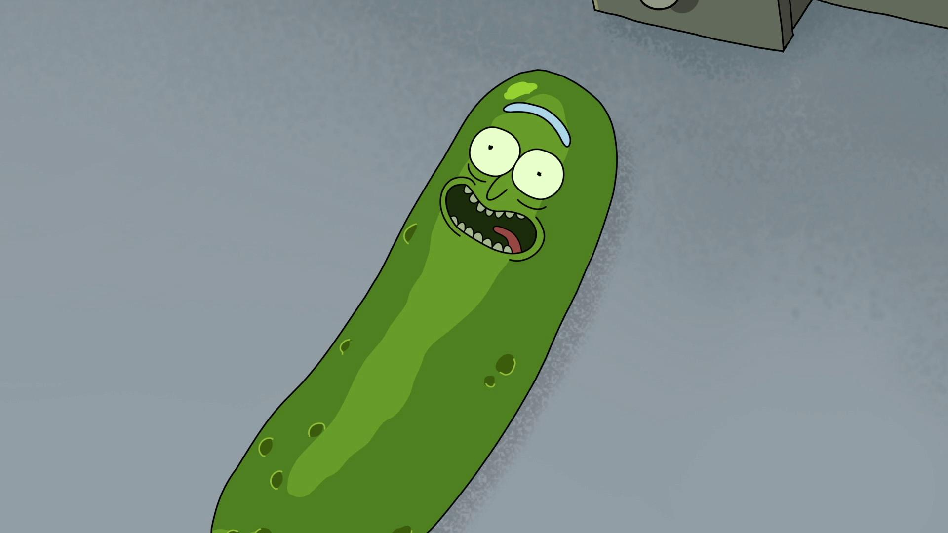 rick morty pickle