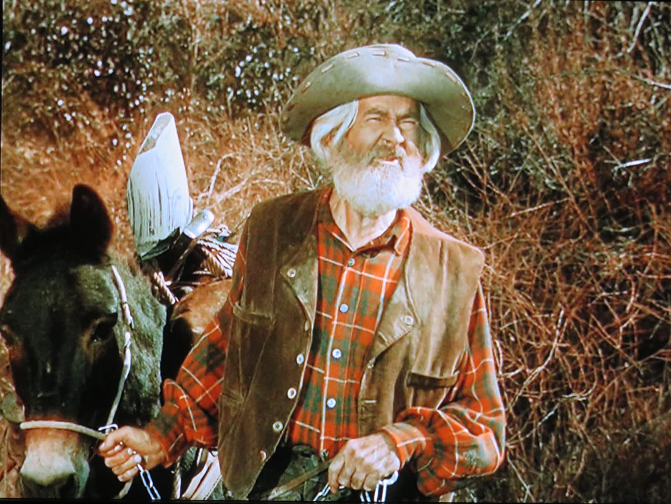 George 'Gabby' Hayes in The Cariboo Trail (1950)