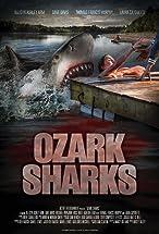 Primary image for Ozark Sharks