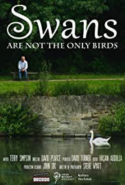 Swans Are Not the Only Birds Poster