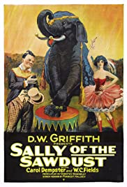 Sally of the Sawdust Poster