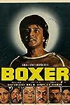 Boxer (1984)