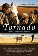 Tornado and the Kalahari Horse Whisperer