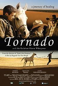 Primary photo for Tornado and the Kalahari Horse Whisperer