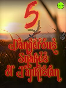 Five Dangerous Snakes of Tajikistan (2017 Video)