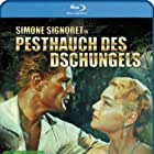 Georges Marchal and Simone Signoret in La mort en ce jardin (1956)