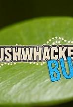 Bushwhacked Bugs!