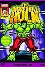 The Incredible Hulk (1982) Poster