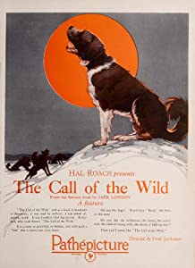 Movie mobile download Call of the Wild by William A. Wellman [BDRip]
