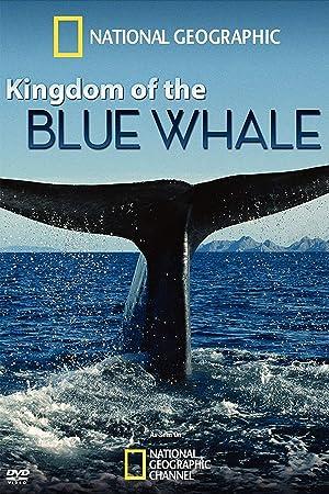 Where to stream Kingdom of the Blue Whale