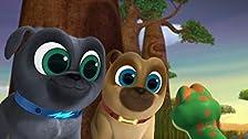 Lemur Play/How the Dog Park Was Won