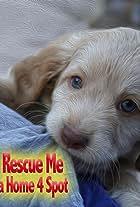 Rescue Me: A Home 4 Spot