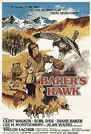 Baker's Hawk Poster