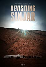Revisiting Sinjar