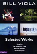 Migration (for Jack Nelson)