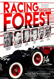Racing Through the Forest Poster