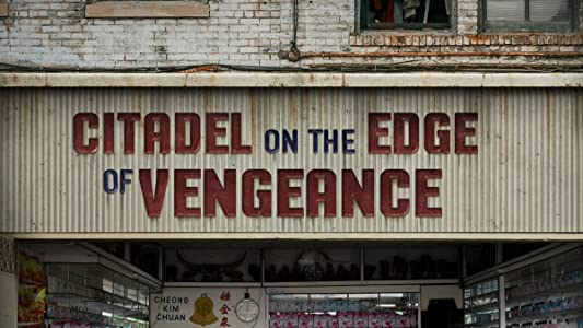 Citadel on the Edge of Vengeance in hindi 720p