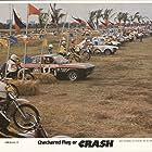 Checkered Flag or Crash (1977)