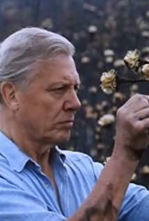 David Attenborough Picture
