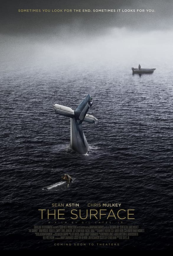 The Surface (2014) Hindi Dubbed