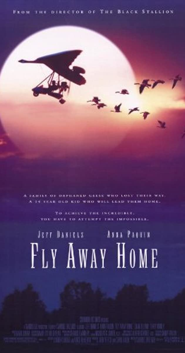 Subtitle of Fly Away Home